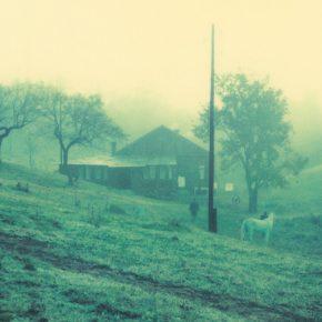 Andrei Tarkovsky – Polaróides