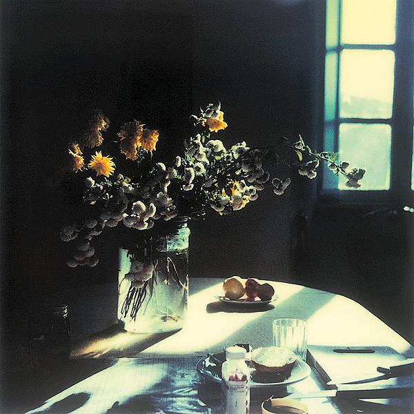 Tarkovsky Polaroid VIII